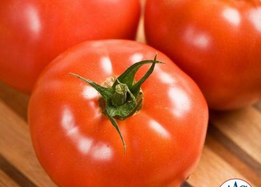 Tomato 'Celebrity' (F1) (AAS Winner)