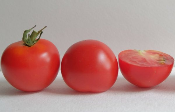 Tomato 'Red Racer' – (New For 2019) (AAS Winner)