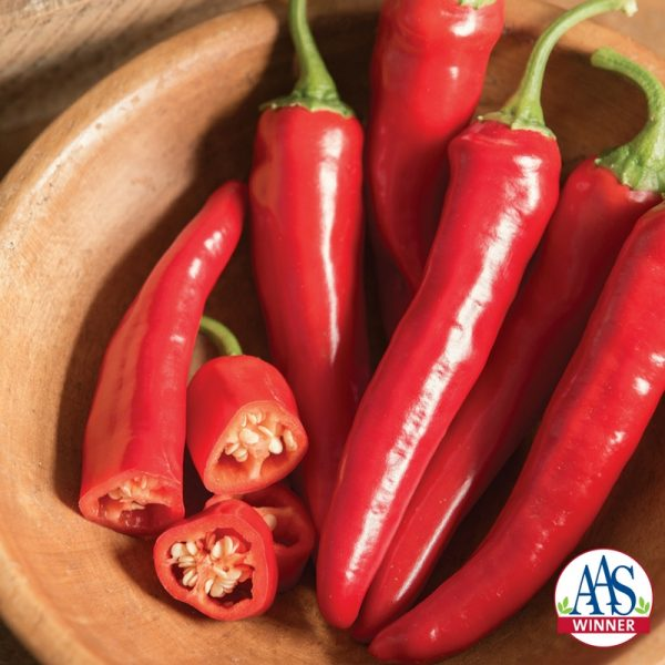 Pepper-cayenne-Red-Ember